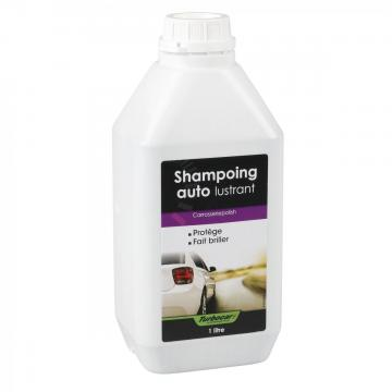 shampoing nettoyant auto lustrant 1 litre produit lavage concentr ebay. Black Bedroom Furniture Sets. Home Design Ideas